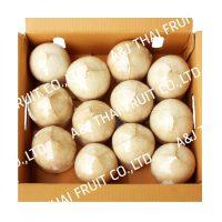 4U_Box12_Polished Coconut_Based Type