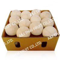 4U_Box24_Polished Coconut _Cone Type