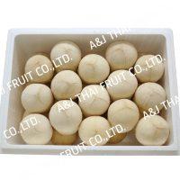 4U_Box30_Polished Coconut_Based Type
