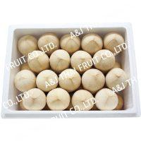 4U_Box36_Polished Coconut_Based Type