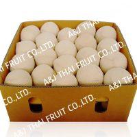4U_Box40_Polished Coconut _Cone Type