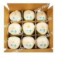 4U_Box9_diamond type_coconut white with semi green