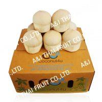 4U_Group_Polished Coconut_Based Type